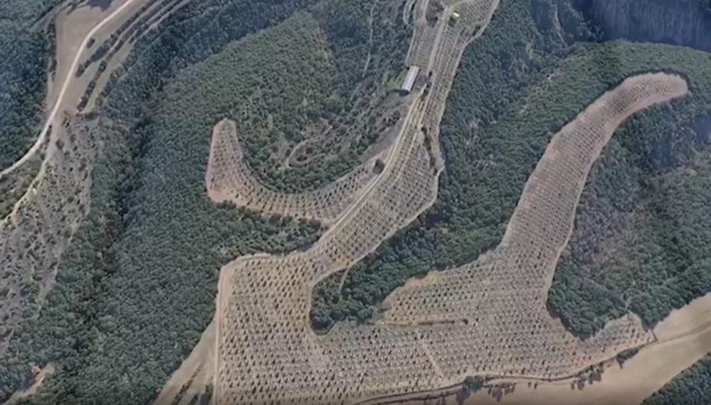 vista aerea plantación de trufa
